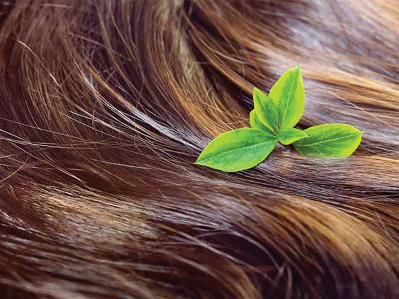 مواد مغذی فراوانی در رشد موها دخیل هستند