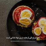 تخممرغ مفید غذا